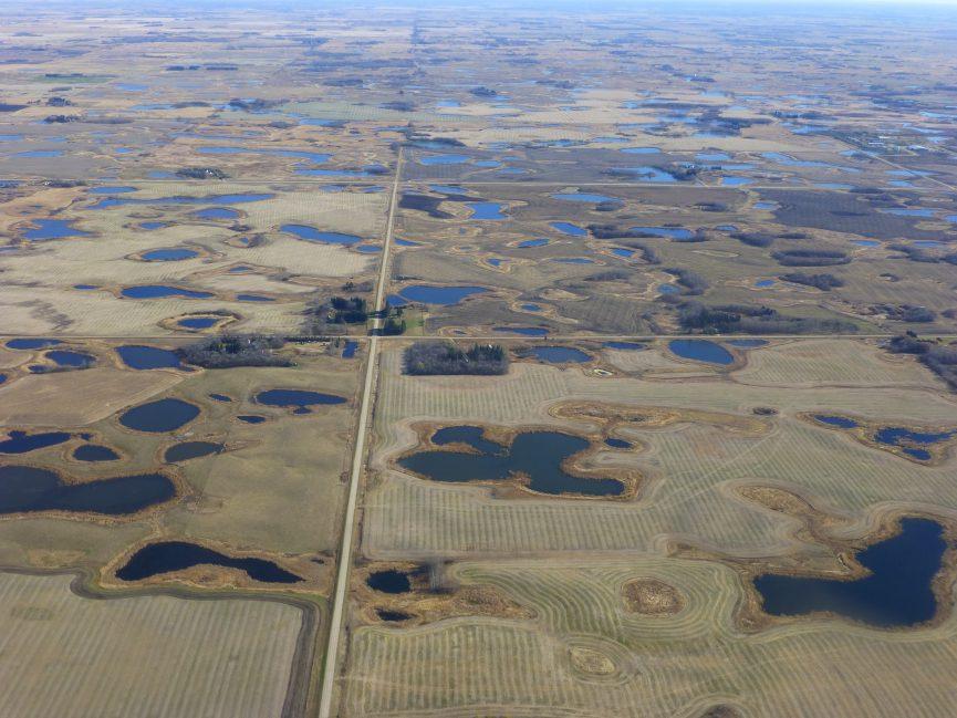 Wetland_Aerial
