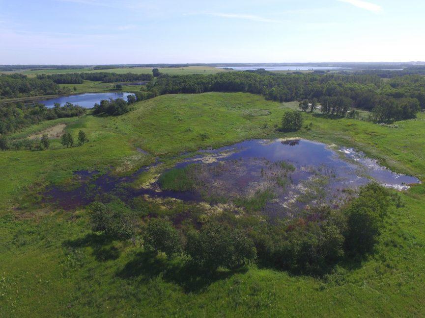 Wetland Restoration Works